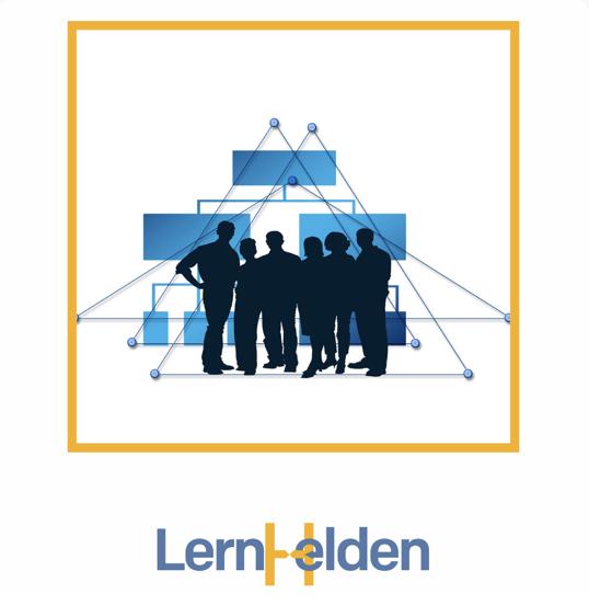 Führen in komplexen Strukturen LernHelden.online Schnellstart in exzellente virtuelle Führung